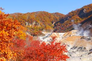登別地獄谷の紅葉の写真素材 [FYI04034429]