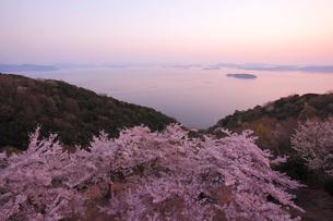 王子が岳の桜の写真素材 [FYI04034430]