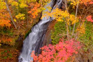 三段の滝と紅葉の写真素材 [FYI04034515]