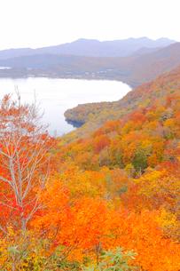 十和田湖の紅葉の写真素材 [FYI04034553]