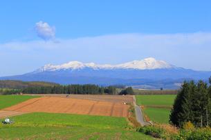 大雪山の写真素材 [FYI04034558]