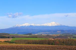 大雪山の写真素材 [FYI04034559]