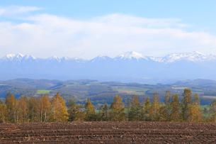 大雪山の写真素材 [FYI04034560]
