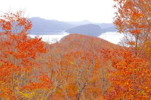 十和田湖の紅葉の写真素材 [FYI04034562]