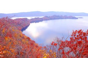 十和田湖の紅葉の写真素材 [FYI04034598]