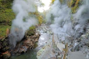 小安峡大噴湯の写真素材 [FYI04034651]