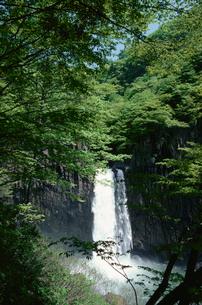 新緑の中の苗名滝の写真素材 [FYI04035188]