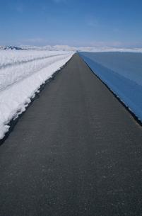 除雪された一本道と山の峰の写真素材 [FYI04035221]