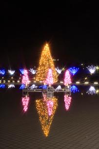 富山県環水公園スイートイルミネーションの写真素材 [FYI04035412]