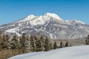 冬の妙高山の写真素材 [FYI04035588]