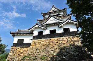 彦根城の写真素材 [FYI04035630]