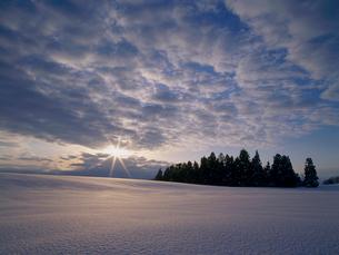 雪原を照らす朝日の写真素材 [FYI04035695]
