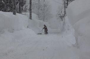 スノウダンプでの除雪作業の写真素材 [FYI04035721]