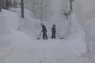 スノウダンプでの除雪作業の写真素材 [FYI04035722]