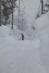 スノウダンプでの除雪作業の写真素材 [FYI04035723]