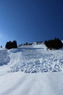 旧浦佐スキー場の雪崩の写真素材 [FYI04035753]