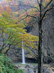 朝の苗名滝と紅葉の写真素材 [FYI04035777]