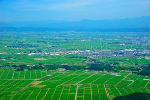 弥彦山から越後平野を望むの写真素材 [FYI04035894]