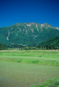 新潟の田園風景の写真素材 [FYI04035911]
