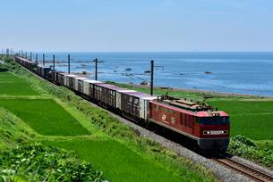 貨物列車の写真素材 [FYI04035935]