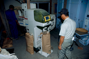 玄米の袋詰め作業の写真素材 [FYI04035986]