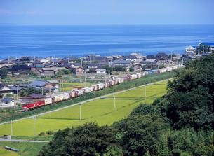 海岸線を走るローカル線の列車の写真素材 [FYI04035991]