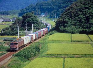 田園の中を走るローカル線の列車の写真素材 [FYI04035996]