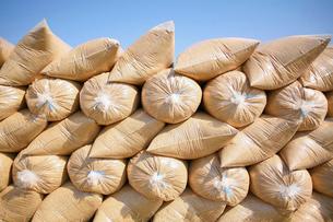 袋詰めされた籾殻の写真素材 [FYI04036051]