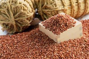 古代米(赤米)のイメージの写真素材 [FYI04036058]