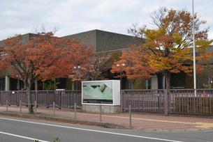 秋の新潟市美術館と紅葉の写真素材 [FYI04036203]