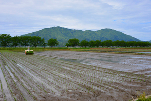 人と農業と田園風景の写真素材 [FYI04036213]
