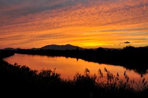 中之口川の夕焼けの写真素材 [FYI04036249]