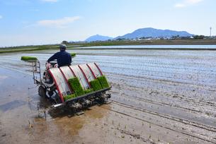 新潟の農作業風景の写真素材 [FYI04036315]