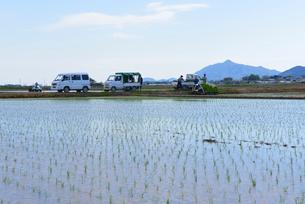 新潟の農作業風景の写真素材 [FYI04036316]