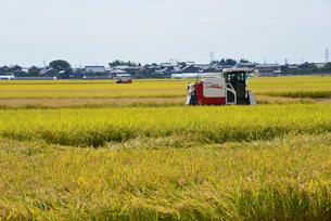 新潟の農作業風景の写真素材 [FYI04036330]