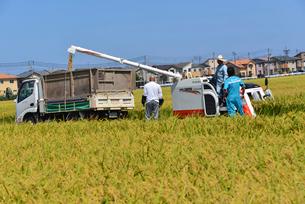 新潟の農作業風景の写真素材 [FYI04036338]