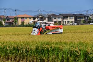新潟の農作業風景の写真素材 [FYI04036339]