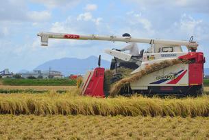 新潟の農作業風景の写真素材 [FYI04036437]