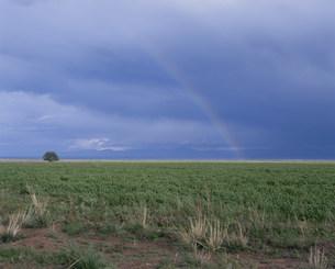イシク・クル湖畔にかかる虹 北西岸より望むの写真素材 [FYI04036461]