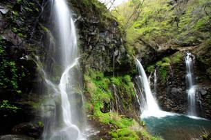 裏見の滝の写真素材 [FYI04036513]