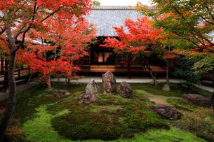 京都最古の禅寺 建仁寺の写真素材 [FYI04036623]