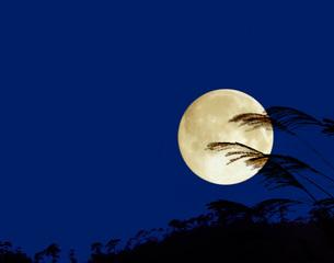 満月の写真素材 [FYI04036725]