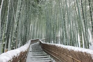 念仏寺の写真素材 [FYI04036749]