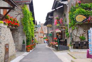 花の村の写真素材 [FYI04036974]