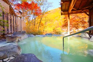 濁り湯温泉露天風呂の写真素材 [FYI04037035]