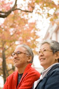 紅葉と日本人シニア夫婦の写真素材 [FYI04037570]
