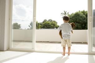 犬を抱く男の子の後ろ姿の写真素材 [FYI04037902]