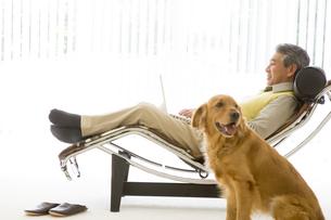 イスの上でパソコンを打つ男性と犬の写真素材 [FYI04037916]