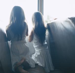 窓の外をのぞく女の子2人の後姿の写真素材 [FYI04038005]
