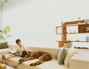 ソファに座る犬と女の子の写真素材 [FYI04038024]